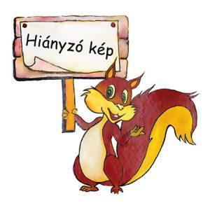 Boc'n'Roll DíszCsempe Piros szendvicscsomagoló
